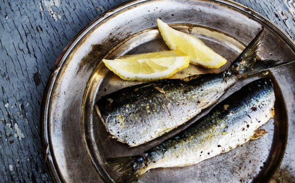 Kandungan Gizi yang ada Pada Ikan Sarden
