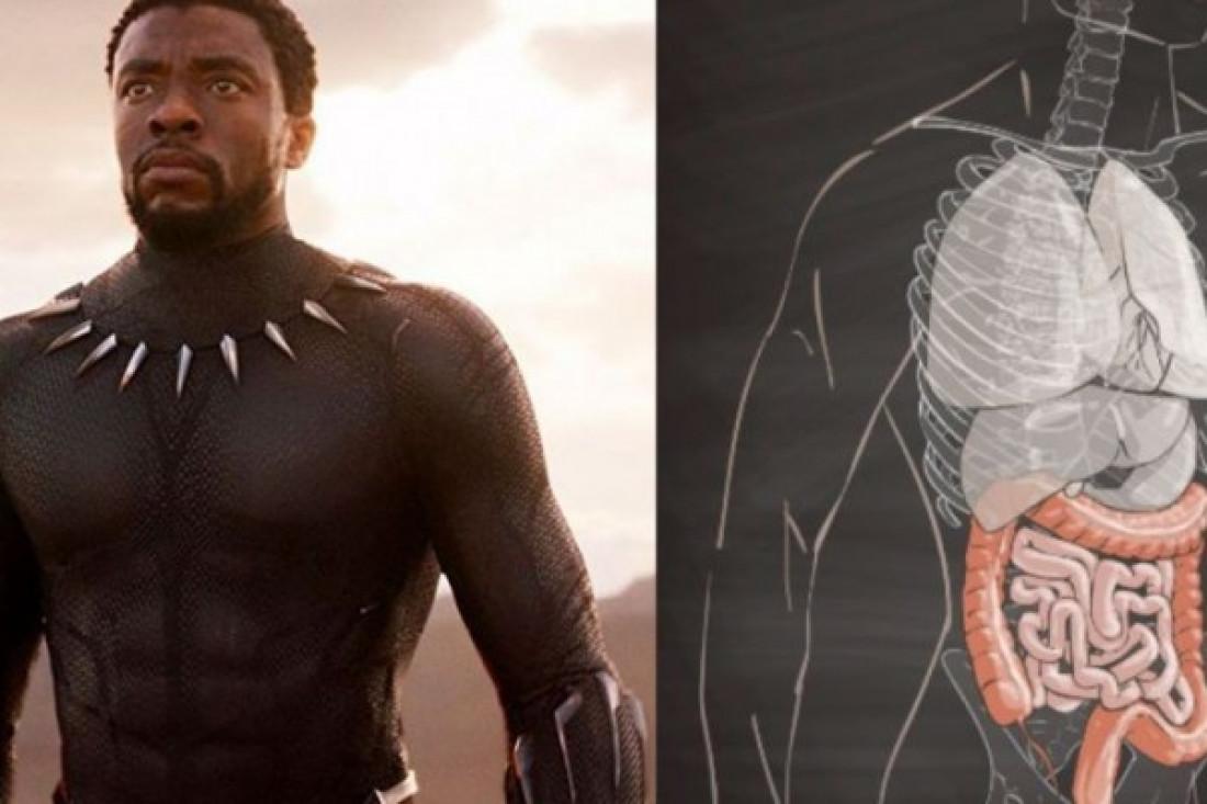 "Mengenal Kanker Kolon yang Diderita Aktor ""Black Panther"""
