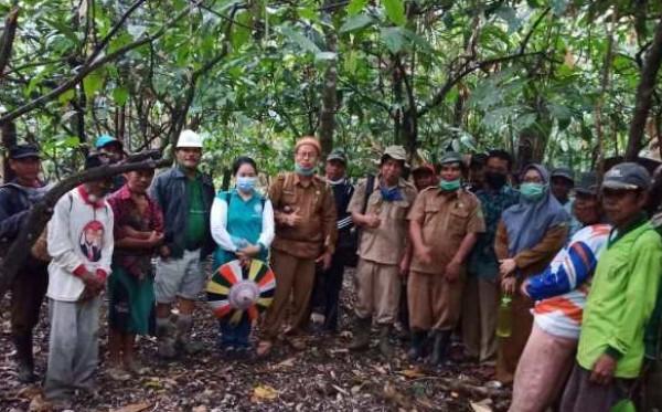 Potensi Kembangkan Tanaman Kakao 150 Ha,  Jadi Program Pemberdayaan Masyarakat